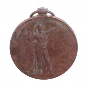 The Victory Medal awarded to Private Moss and found by Jason Lovett
